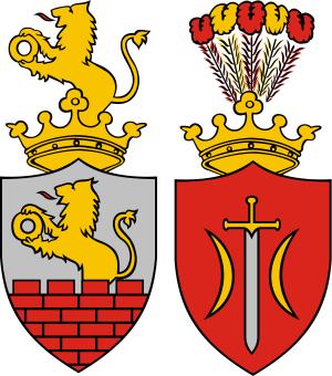 Herb Miasta Zduńska Wola